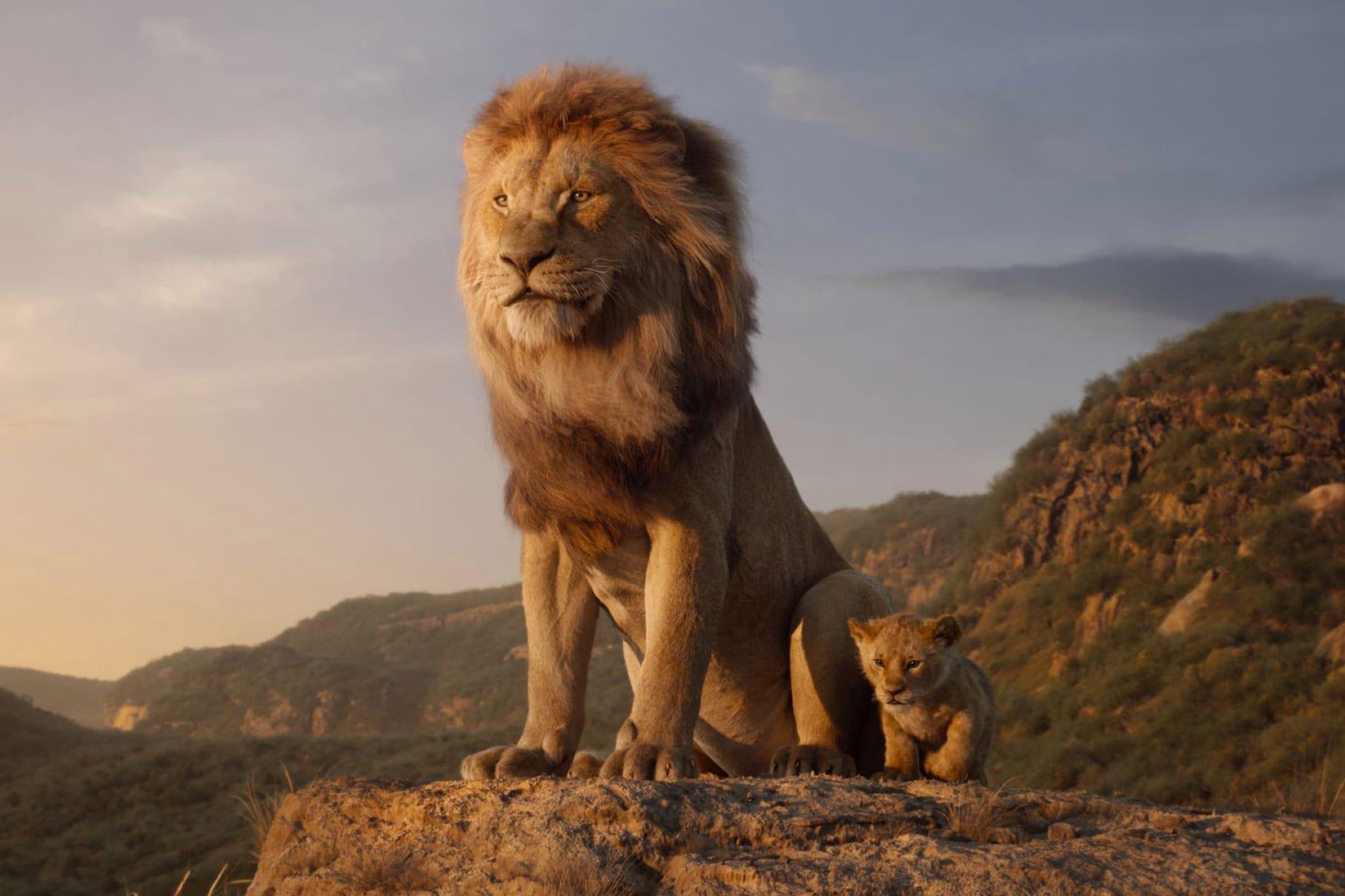Lion King Sequel