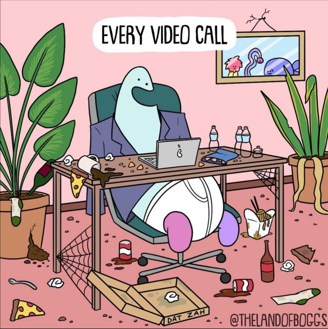 every-video-call