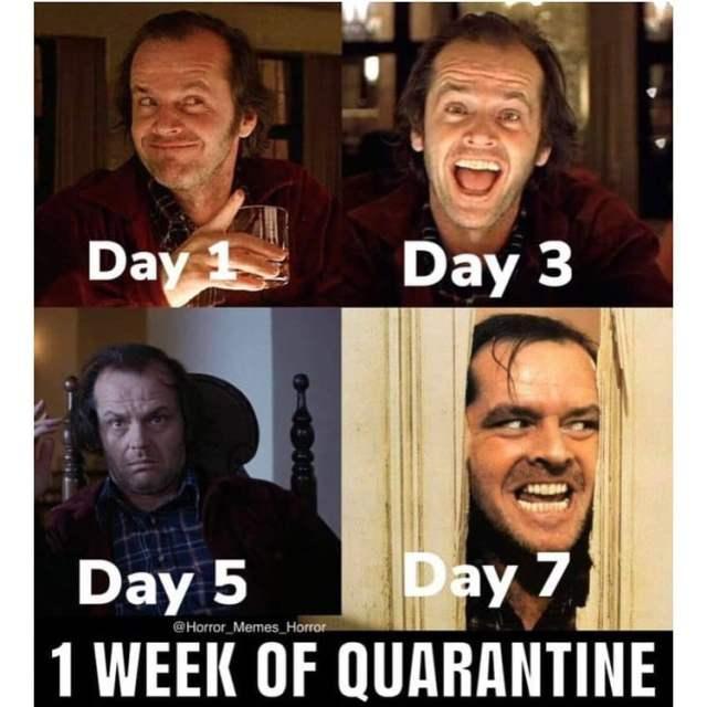 funny_quarantine_85149964_254834638865080_5370647994541008161_n