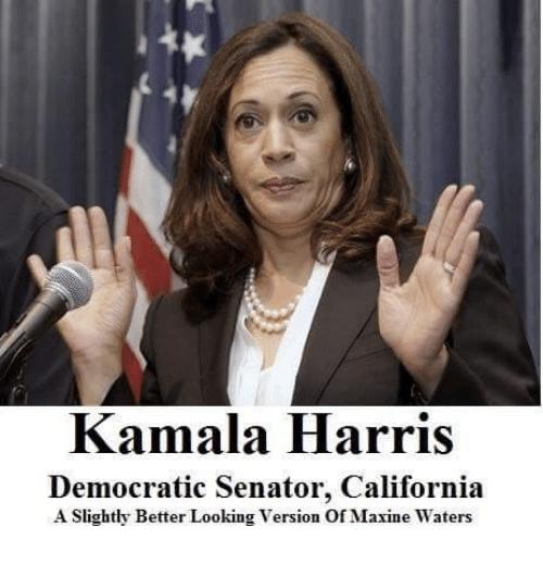 kamala-harris-democratic-senator-california-a-slightly-better-looking-version-22864453