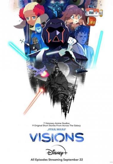 swvisions